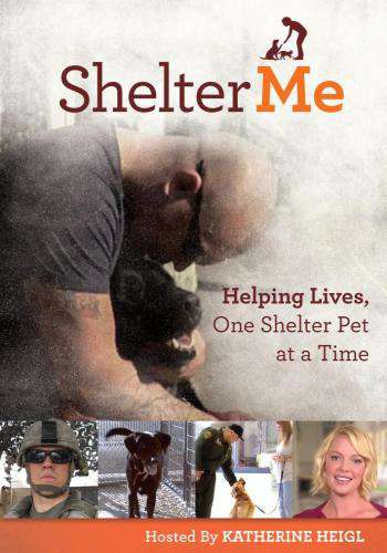 Shelter Me, Movie on DVD, Drama Movies, Documentary & Special Interest