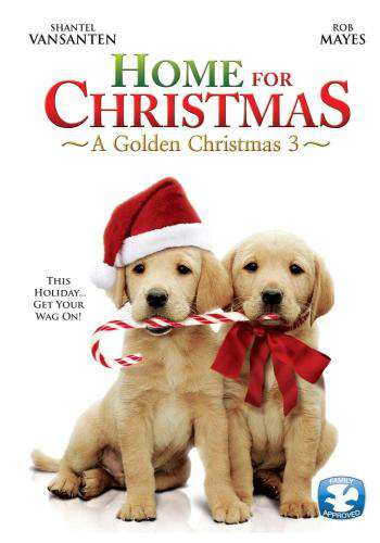 Home For Christmas: A Golden Christmas 3, Movie on DVD, Family