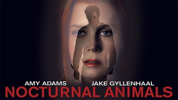 Nocturnal Animals