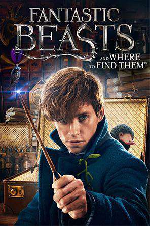 Fantastic Beasts and Where to Find Them, Movie on DVD,