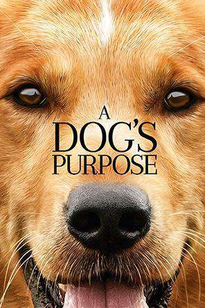 New Movies A Dogs Purpose