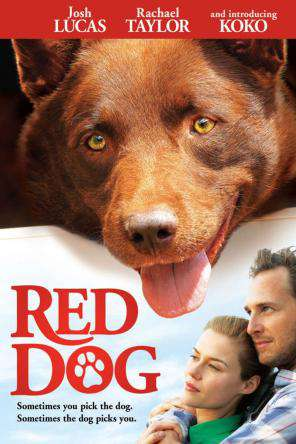 Red Dog, Movie on DVD, Family