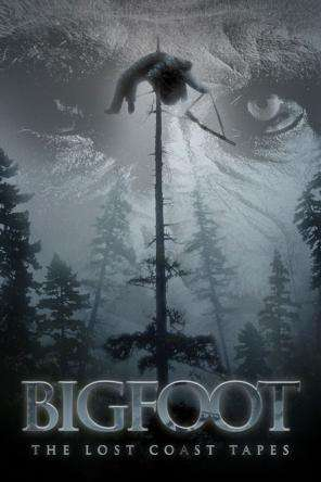 Bigfoot: The Lost Coast Tapes, Movie on DVD, Horror Movies, Action Movies, Horror