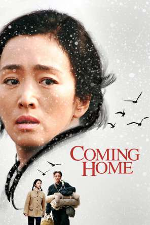 Coming Home (2015), Movie on DVD, Drama Movies, Romance