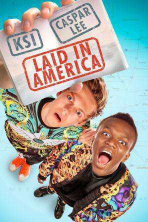 Laid In America, Movie on DVD, Comedy