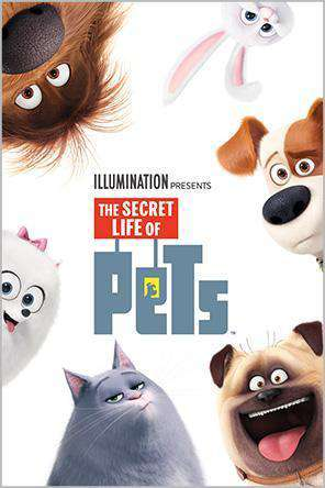 The Secret Life of Pets, Movie on DVD, Adventure Movies, Animated Movies, Kids Movies, Comedy Movies, Family
