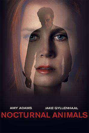 Nocturnal Animals, Movie on DVD, Thriller & Suspense