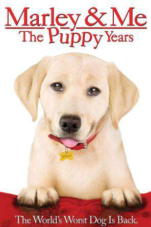 Marley and Me: The Puppy Years, On Demand Movie, Family