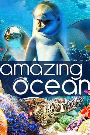 Amazing Ocean, On Demand Movie, Family DigitalMovies, Special Interest