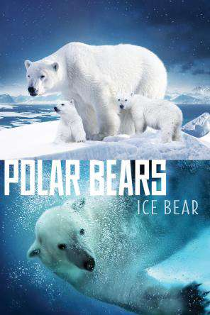 Polar Bears: Ice Bear, On Demand Movie, Family DigitalMovies, Special Interest