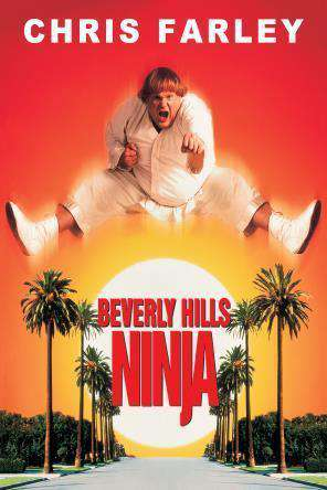 Beverly Hills Ninja, On Demand Movie, Comedy