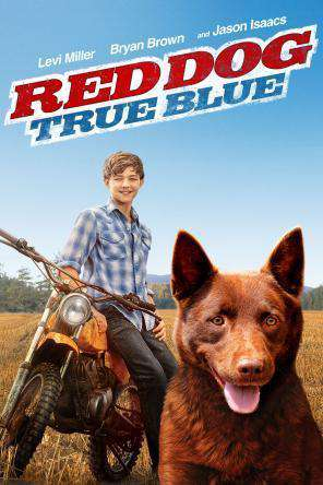 Red Dog: True Blue, On Demand Movie, Adventure DigitalMovies, Comedy DigitalMovies, Family