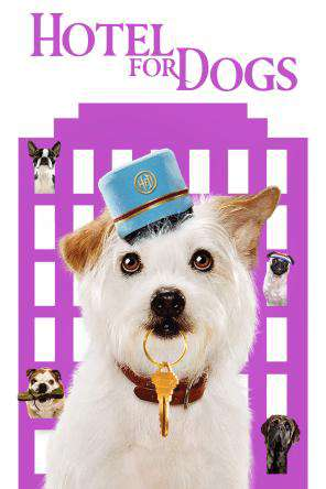 Hotel For Dogs, On Demand Movie, Comedy DigitalMovies, Family
