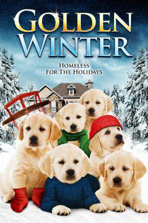 Golden Winter, Movie on DVD, Family