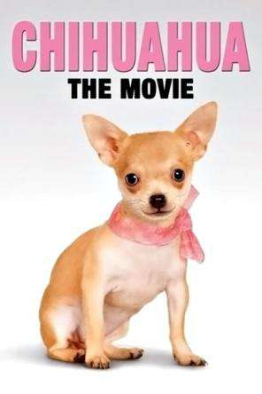 Chihuahua: The Movie, Movie on DVD, Family
