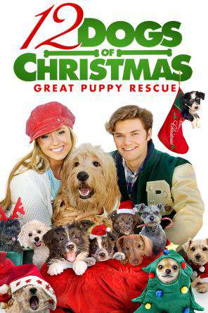12 Dogs of Christmas: Great Puppy Rescue, Movie on DVD, Family