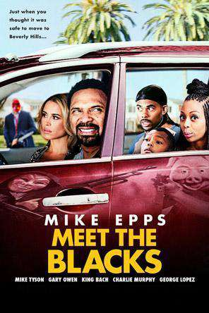 Meet The Blacks, Movie on DVD, Comedy