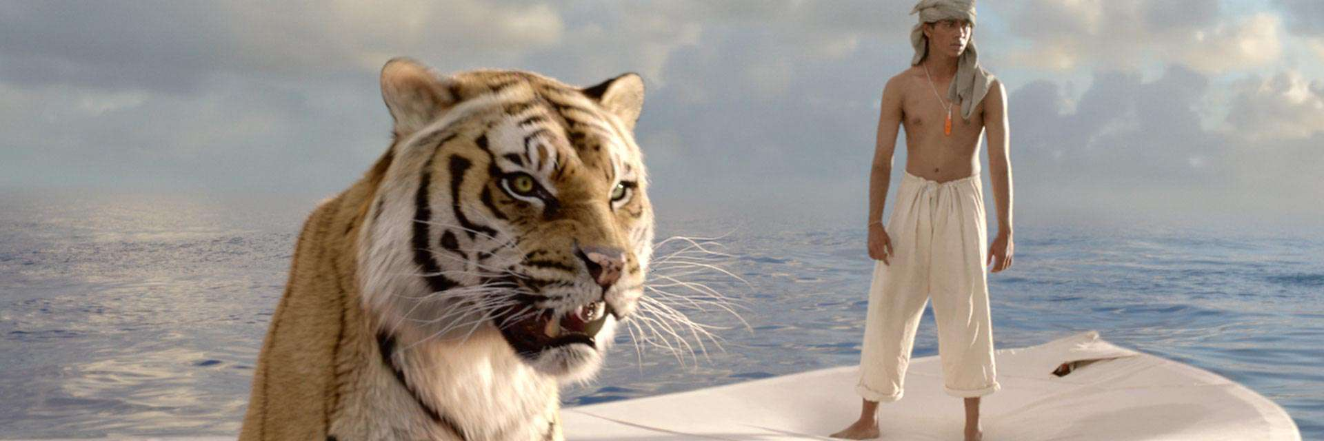 life of pi for rent other new releases on dvd at redbox share